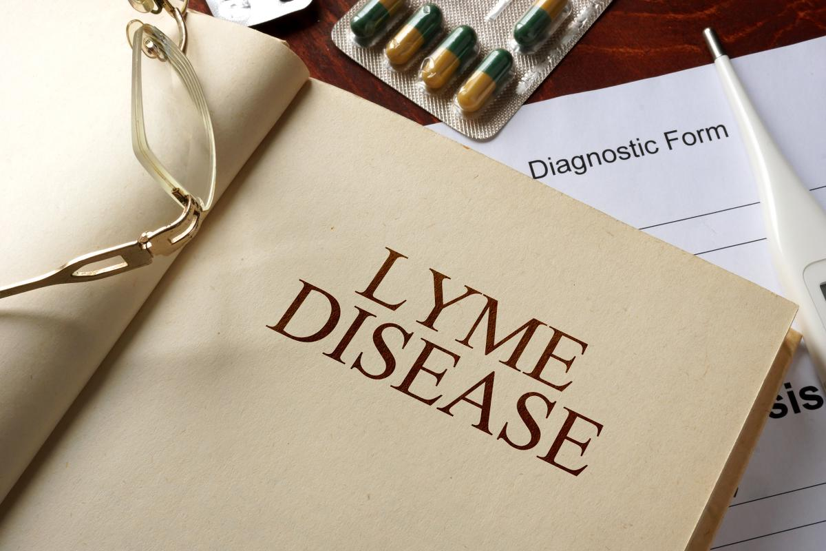 https://www.indianalymeconnect.org/wp-content/uploads/2018/04/brief-overview-of-lyme-indiana.jpg