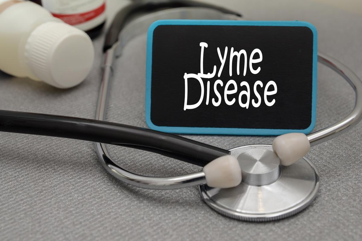 https://www.indianalymeconnect.org/wp-content/uploads/2018/06/cme-resources-lyme-disease-basics-for-professionals-02.jpg